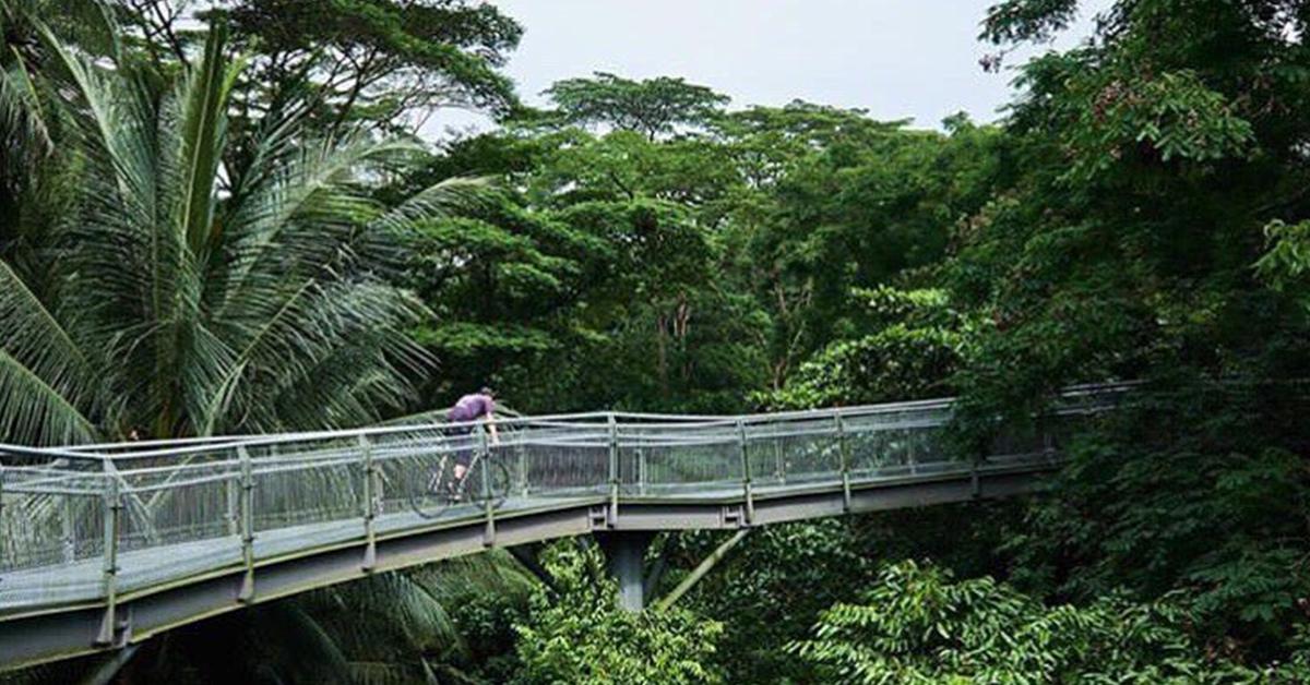 Keirinberlin Bikademy Singapore